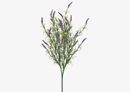 Aralyn Lavender Bunch