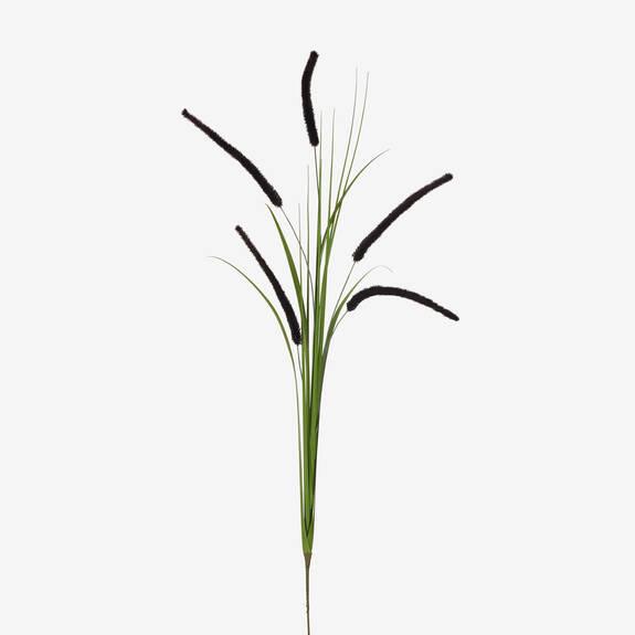 Tige herbes écouv. en pot Pamela noires