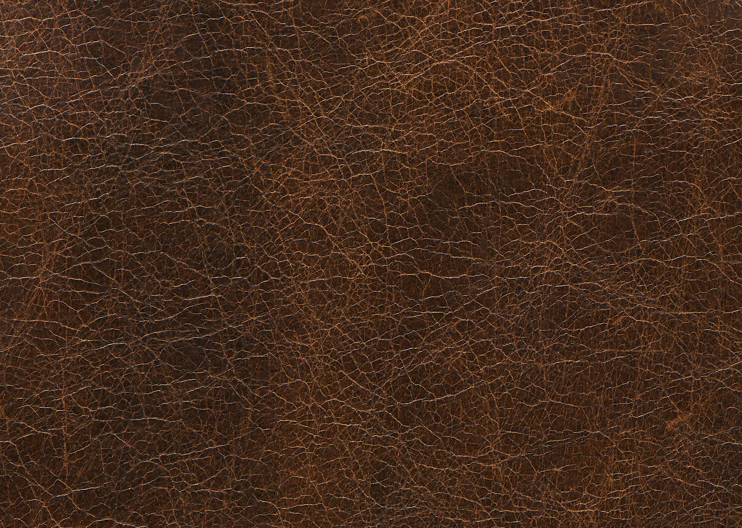 Fauteuil en cuir Savoy -Jasper noyer
