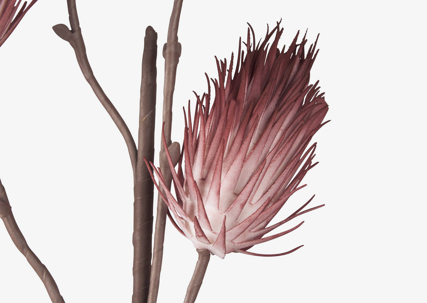 Liya Bud Branch Clay Pink
