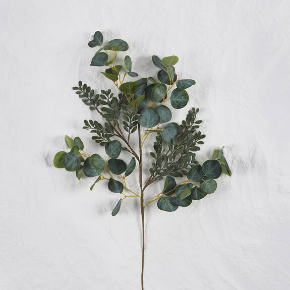 Branche Merida naturelle