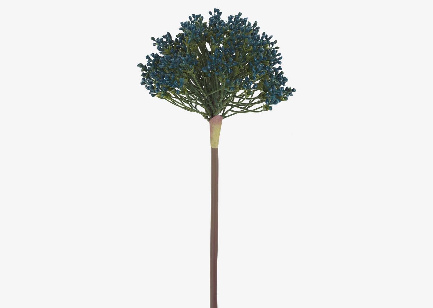 Aleesa Allium Stem