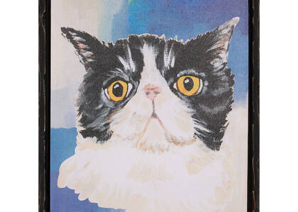 Paws Cat Wall Art