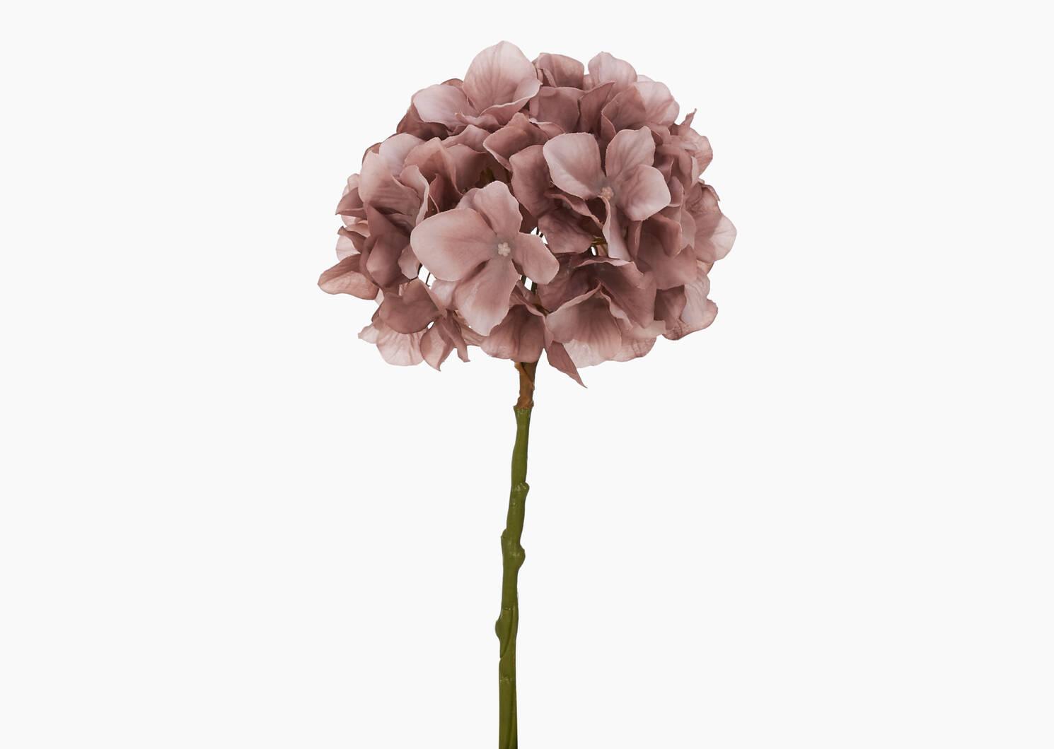 Tige d'hydrangée Shae rose ballet