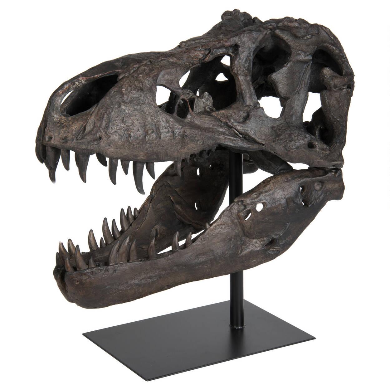 Paleo Head Natural Statue