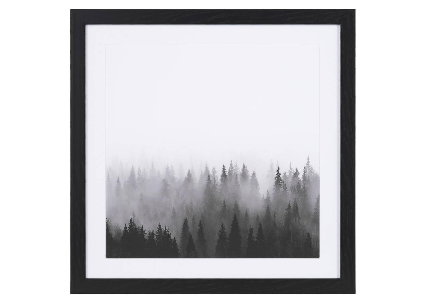 Tableau Treetops (cimes)