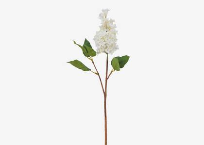Lotte Dutch Lilac Stem Ivory