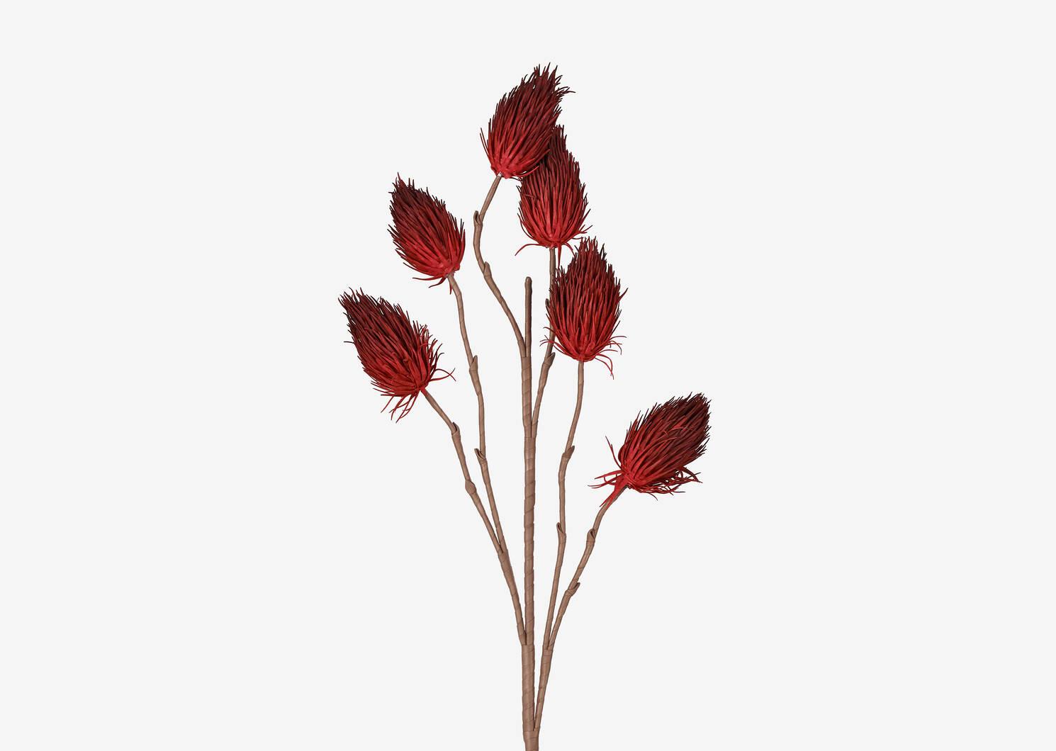 Branche bourgeons Liya rouge amaryllis