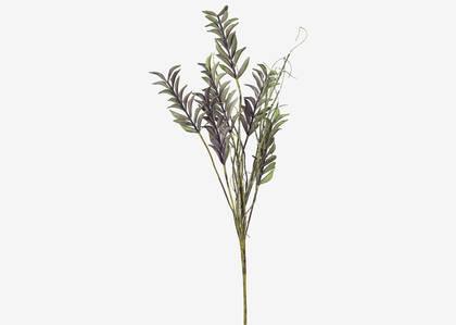Fia Leaf Stem