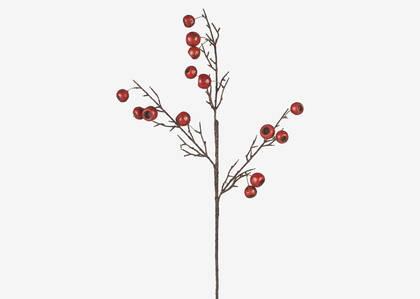 Bode Berry Branch Brandy