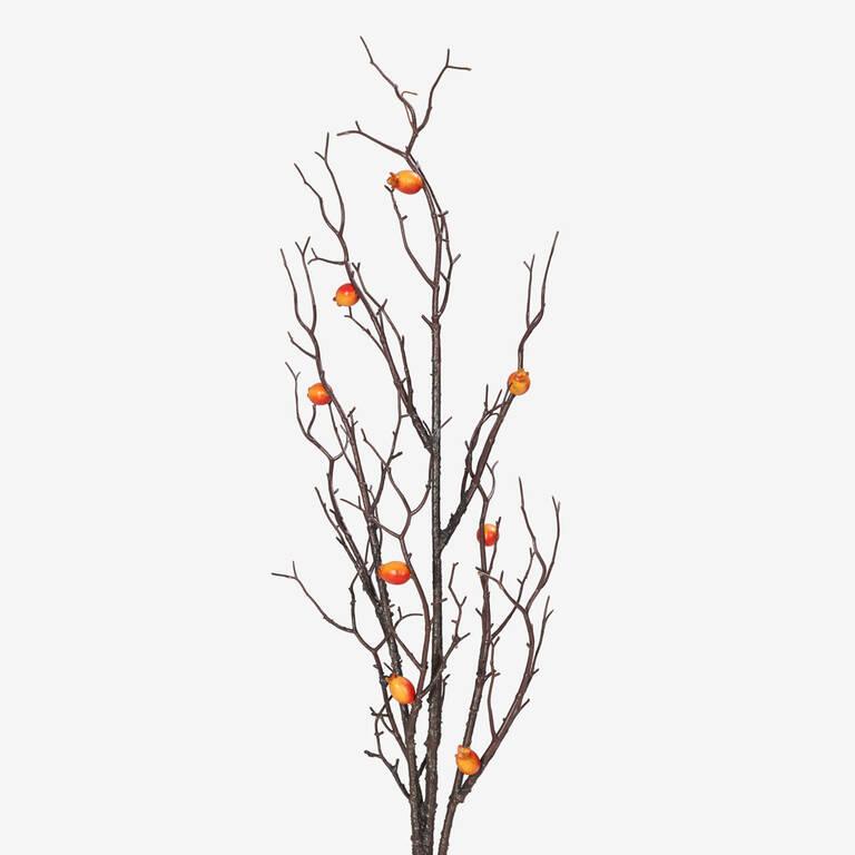 Moira Fruit Branch Cumin