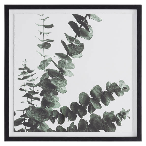 Eucalyptus 2 Wall Art