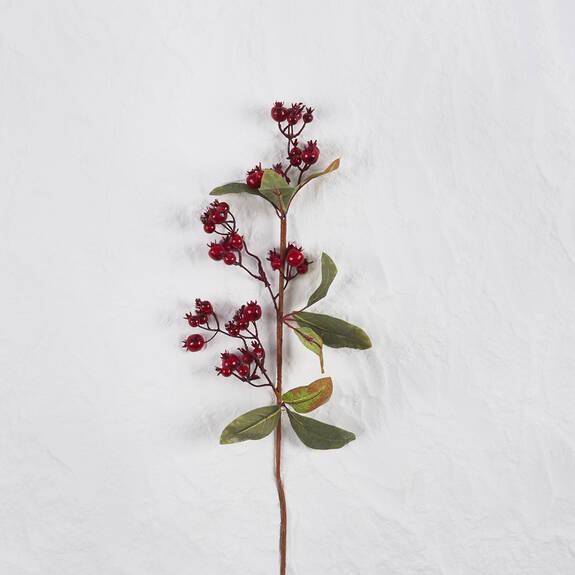 Branche de baies Eden rouges