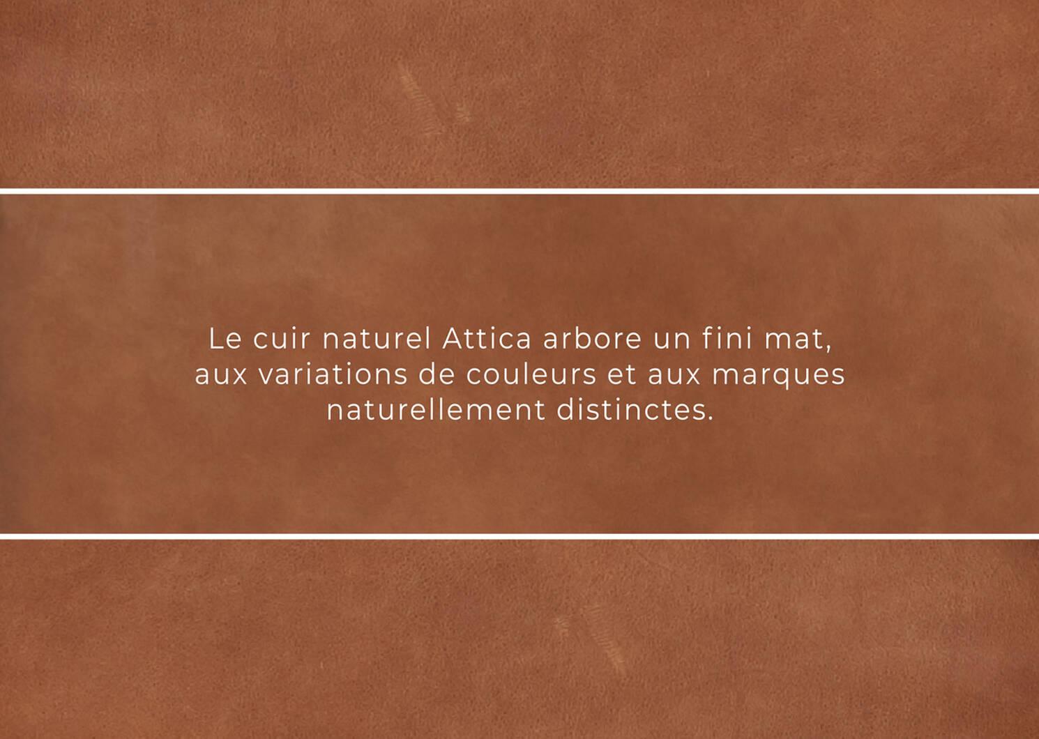 Fauteuil en cuir Lucca -Attica cannelle
