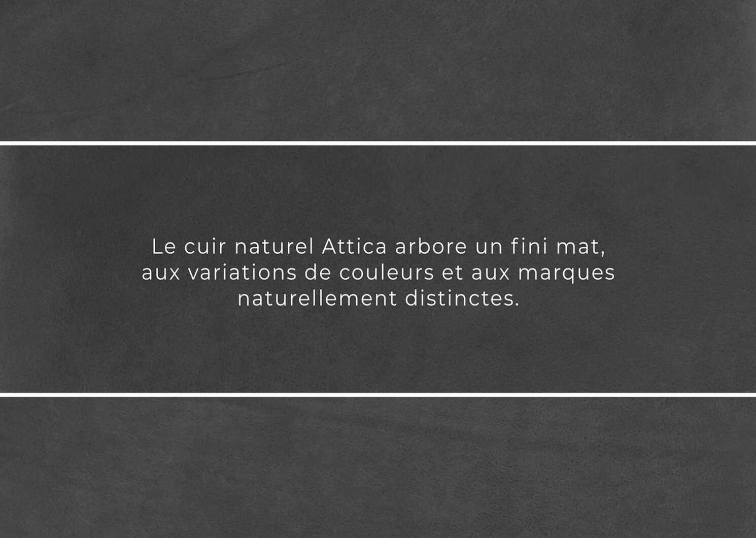 Fauteuil en cuir Lucca -Attica ardoise