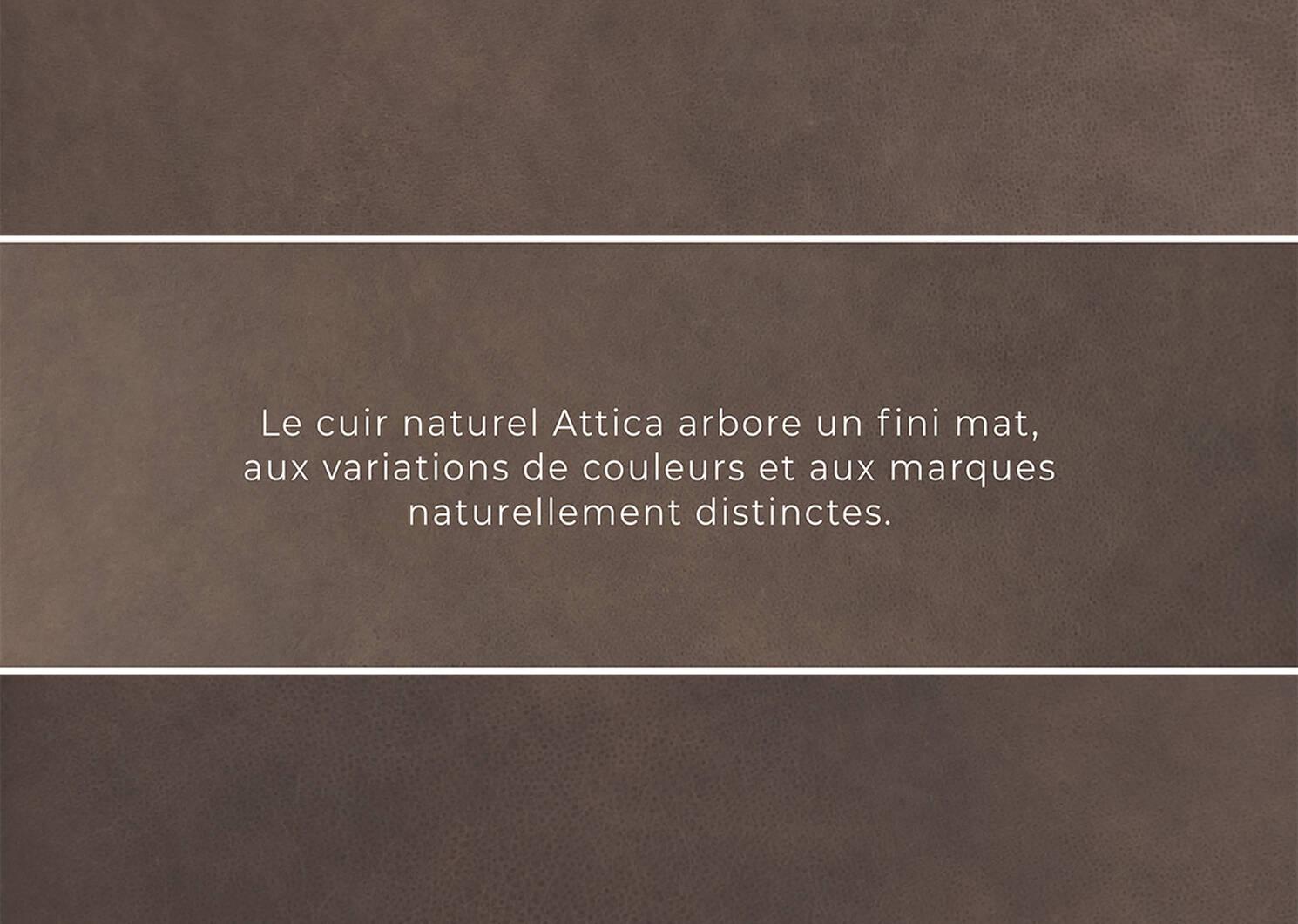 Fauteuil en cuir Brewer -Attica cacao