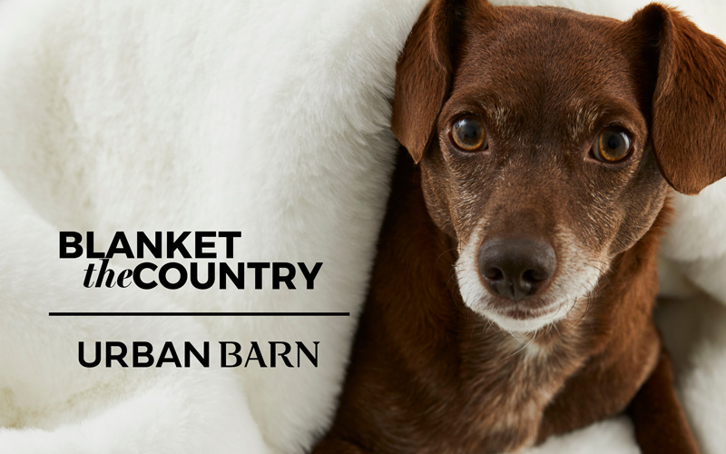Blanket the Country